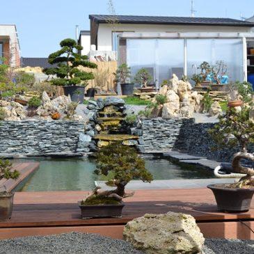 Záhrada a bonsaje dnes